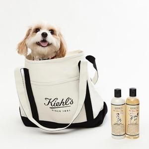Kiehl's (科颜氏/契尔氏)海淘返利